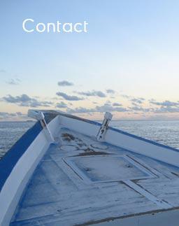 Six fumaison poissonnerie mouscron vente de poisson for Vente de poisson